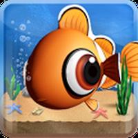 Peixe - Fish Live